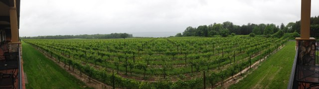 New York wineries