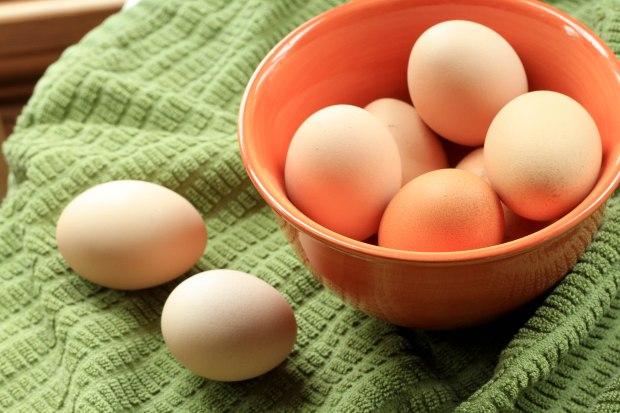farmy eggs