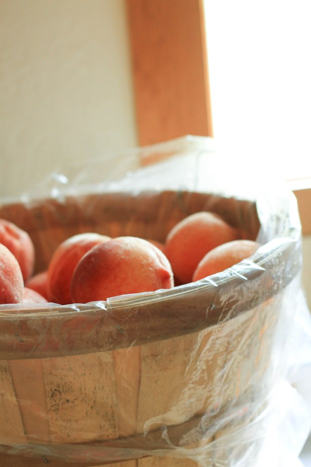 basket of peaches